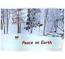 Winter Scene - Red Deer  Poster