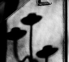 Silverdale 5 by Mark  Coward