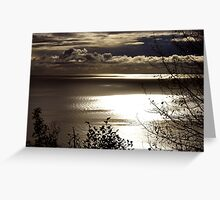 Cook Inlet Greeting Card