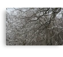 Cold Winter Afternoon Canvas Print