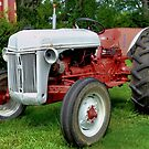 Ford Tractor by Thomas Eggert
