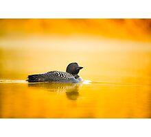 Misty Morning Glow Photographic Print