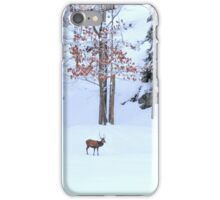 Winter Scene - Red Deer  iPhone Case/Skin
