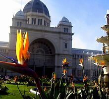 Glorious Melbourne by dher5