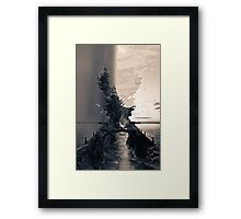 Bridge crossing  Framed Print
