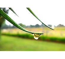 Raindrop - St Mar's Towers Retreat Centre NSW Photographic Print
