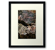 Petrified Forest Abstract Framed Print