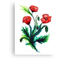 Poppies - Flowers Canvas Print