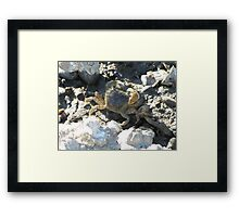 Shoreside Crabby Worker on the Sound Framed Print