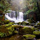 Horseshoe Falls - Mt Field Nat Park by Anthony Davey