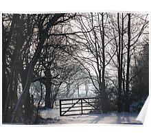 Crisp Winter Day Poster