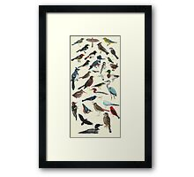 Bird Fanatic Framed Print