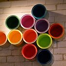 Buckets of Colour by DEB CAMERON