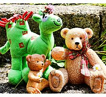 Teddies,Daisies And Friend Photographic Print