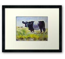 Belted Galloway Cow Painting Framed Print