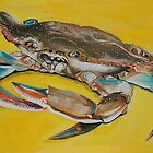 Maryland Blue Crab by John Windsor