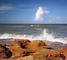 Washington Rocks #7. Flagler County. by chris kusik