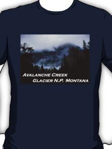 Avalanche Creek, Glacier N.P., Montana T-Shirt