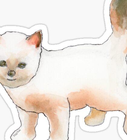 Cute Little Kitten Sticker