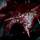 Autumn Rain by Dana Horne