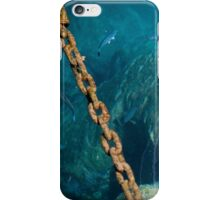 Marine fish and chain iPhone Case/Skin