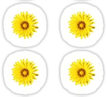 Yellow Everlastings with other Wildflowers Sticker