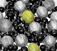 Gooseberries And Blackcurrants by lynn carter