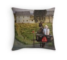 Take the long way home (Amish) Throw Pillow