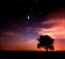 Comet Hale-Bopp at Sunrise. Lake Kissimmee. by chris kusik