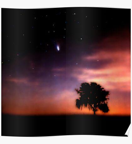 Comet Hale-Bopp at Sunrise. Lake Kissimmee. Poster
