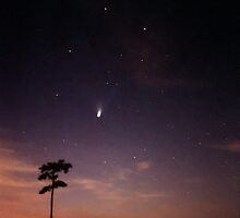 Comet Hale-Bopp at Sunrise and the Milky Way. by chris kusik