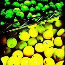 Lemon/Lime by Anne  McGinn