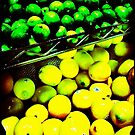 Lemon/Lime by Anne  McGinn