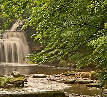 West Burton Falls by Sue Knowles