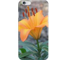 A Lily in the Green iPhone Case/Skin