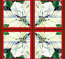 White Poinsettia Festive Decor  by Irina Sztukowski