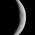 Luna. Landscape #2. by chris kusik