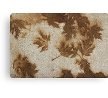 Brown maple leaf stains  Canvas Print
