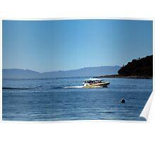 Bruny Island Adventure Poster