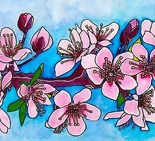 Spring Blooms ~ Cherry Blossoms by Diane McWhirter