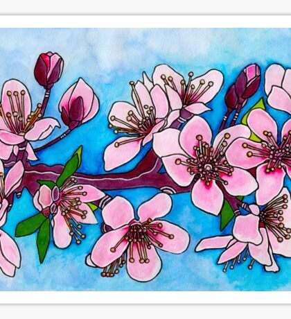 Spring Blooms ~ Cherry Blossoms Sticker