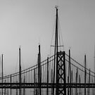Bay Bridge Setting Sail by Toby Harriman