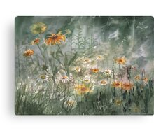 Plein Air 7 Canvas Print