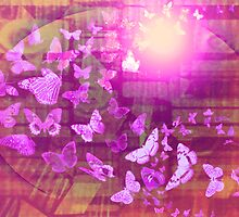 Butterflies by Gary Caruthers