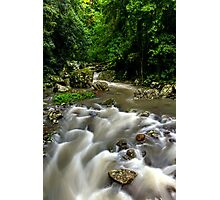 Cave Creek - Springbrook National Park Photographic Print