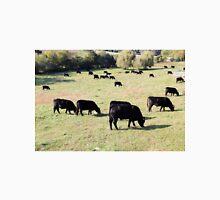 Black Angus beef cattle  Unisex T-Shirt