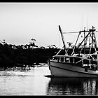Fishing Trawler by Daral Chapman
