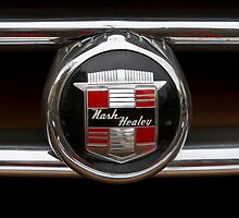 Nash Healey by dlhedberg