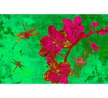 Dragonfly and Flowers. Photographic Print