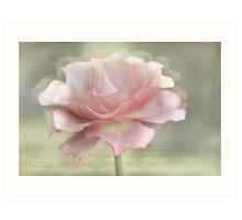 A rose named Karen  Art Print